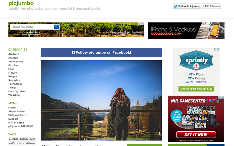 Český designérský projekt PicJumbo.com řečí čísel
