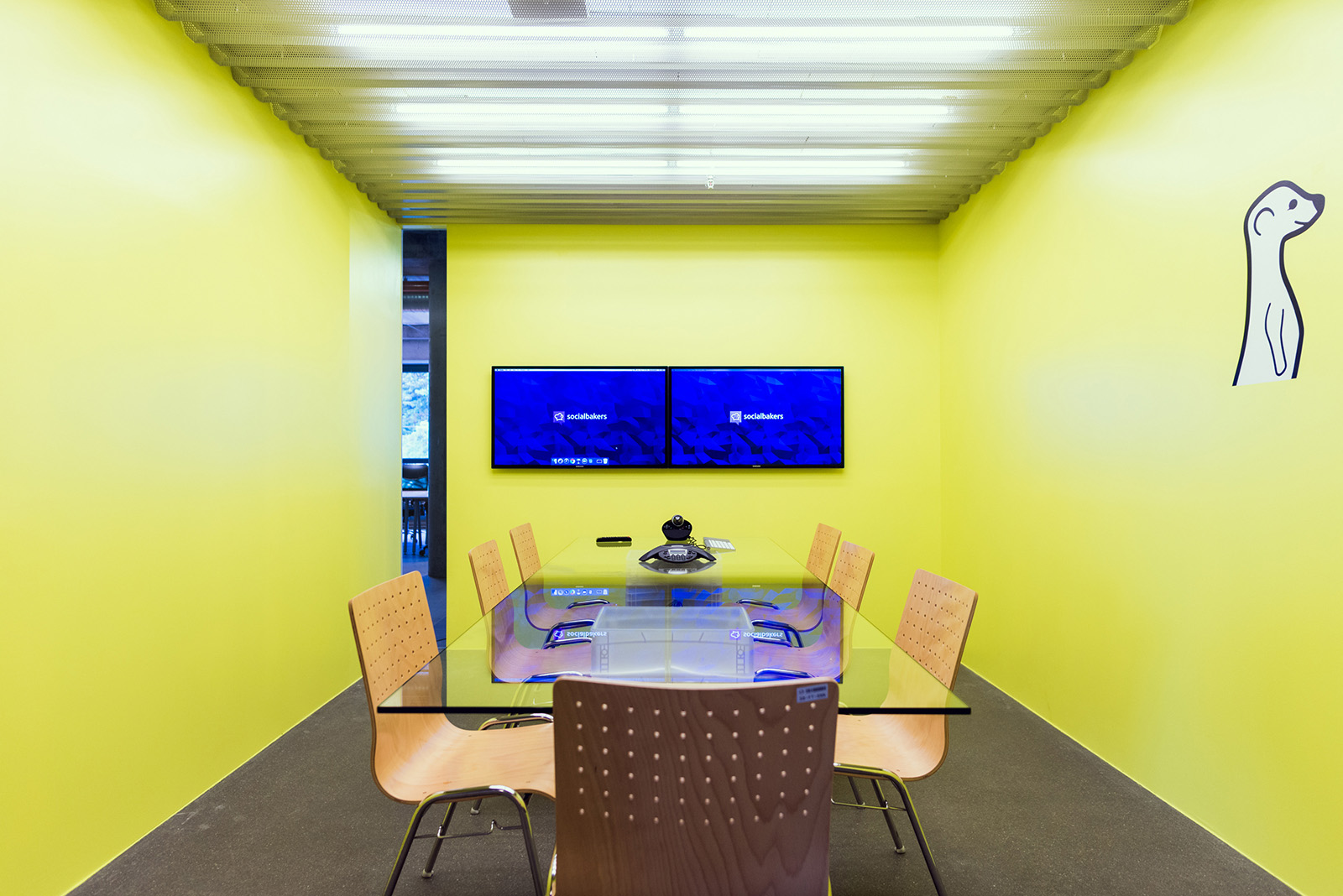 Meerkat meeting room