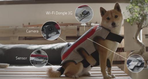 The Posting Tail: vesta, která vašemu psovi umožní pořizovat vlastní fotky na Instagram