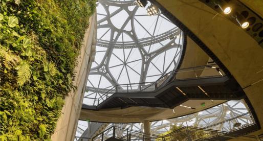 Amazon otevřel v Seattlu kanceláře ve tvaru koule, které imitují deštné pralesy