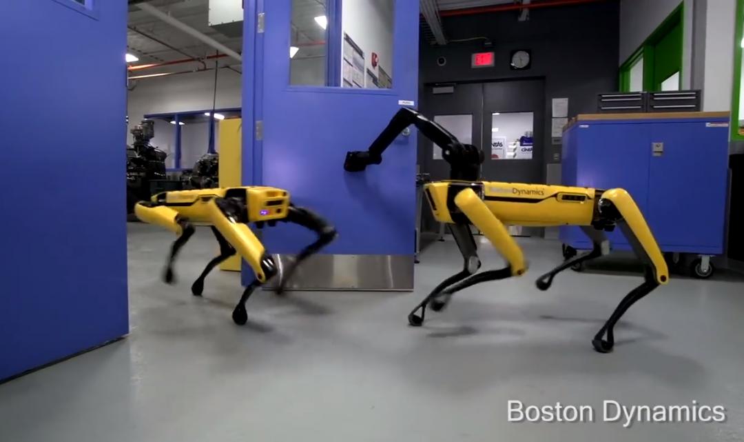 Roboti od Boston Dynamics spolu nově zvládnou spolupracovat, například při otevírání dveří