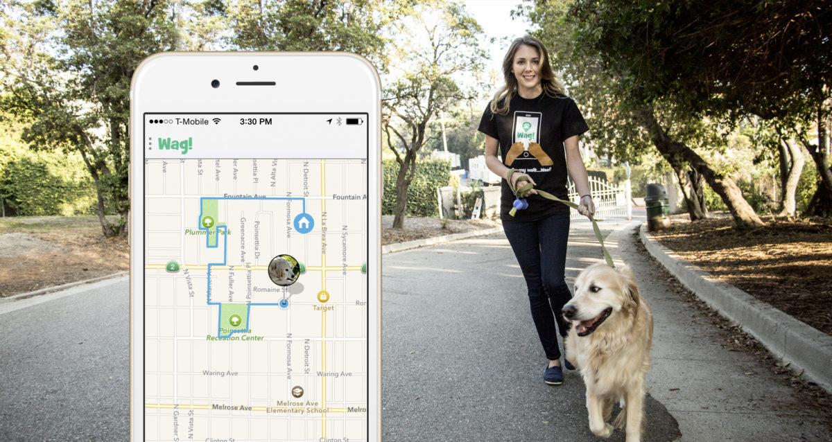 Startup Wag na venčení a hlídání psů, který získal 300 milionů dolarů
