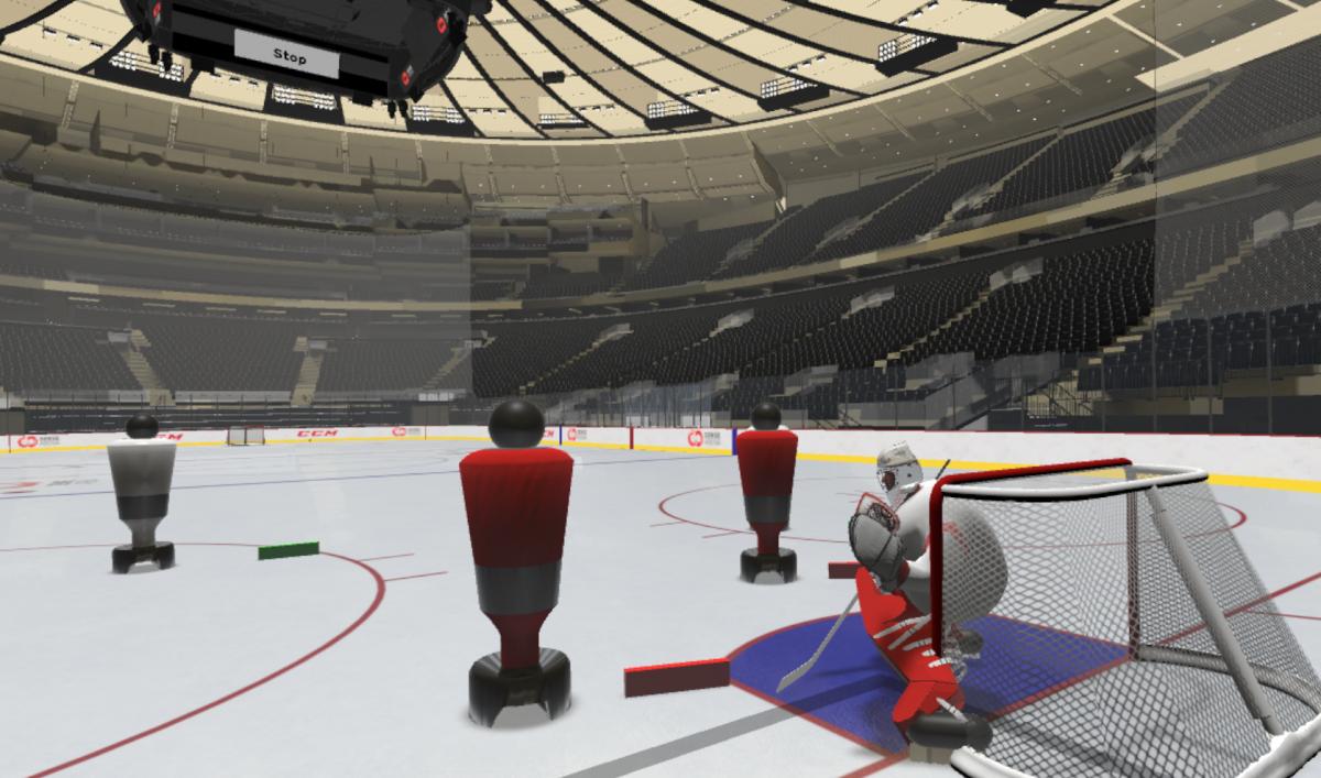 Virtuální prostředí Sense Arena pro trénink hokeje