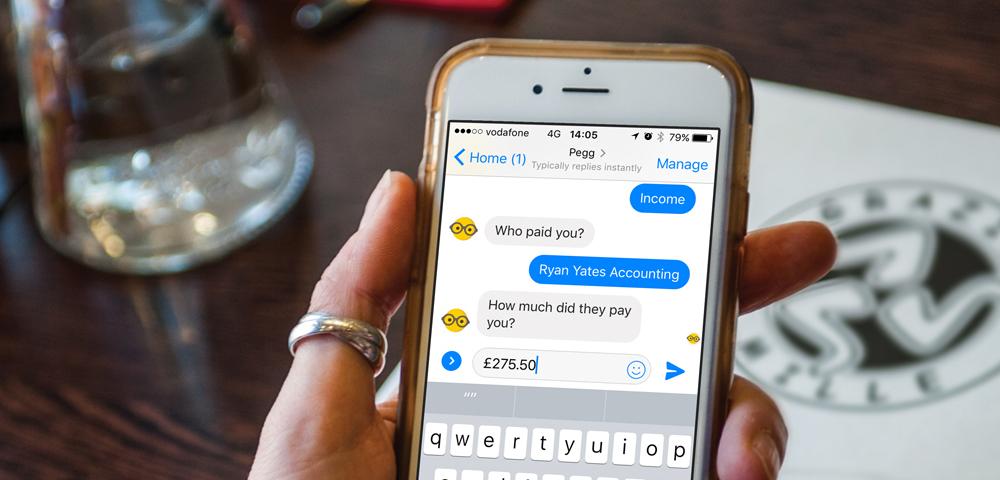 Účetní chatbot Pegg