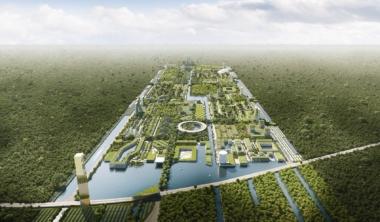 smart-forest-mesto-1