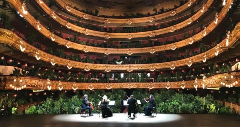 opera-barcelona-plants